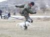 Adiestramiento de defensa y seguridad