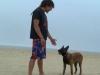 Fortalece los vínculos con tu perro